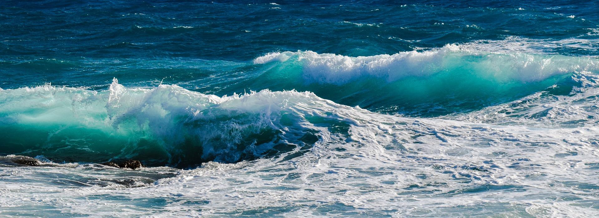 Ocean życia w zaburzeniach odżywiania